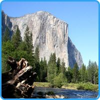 Yosemite National Park Tour | Best Bay Area Tours