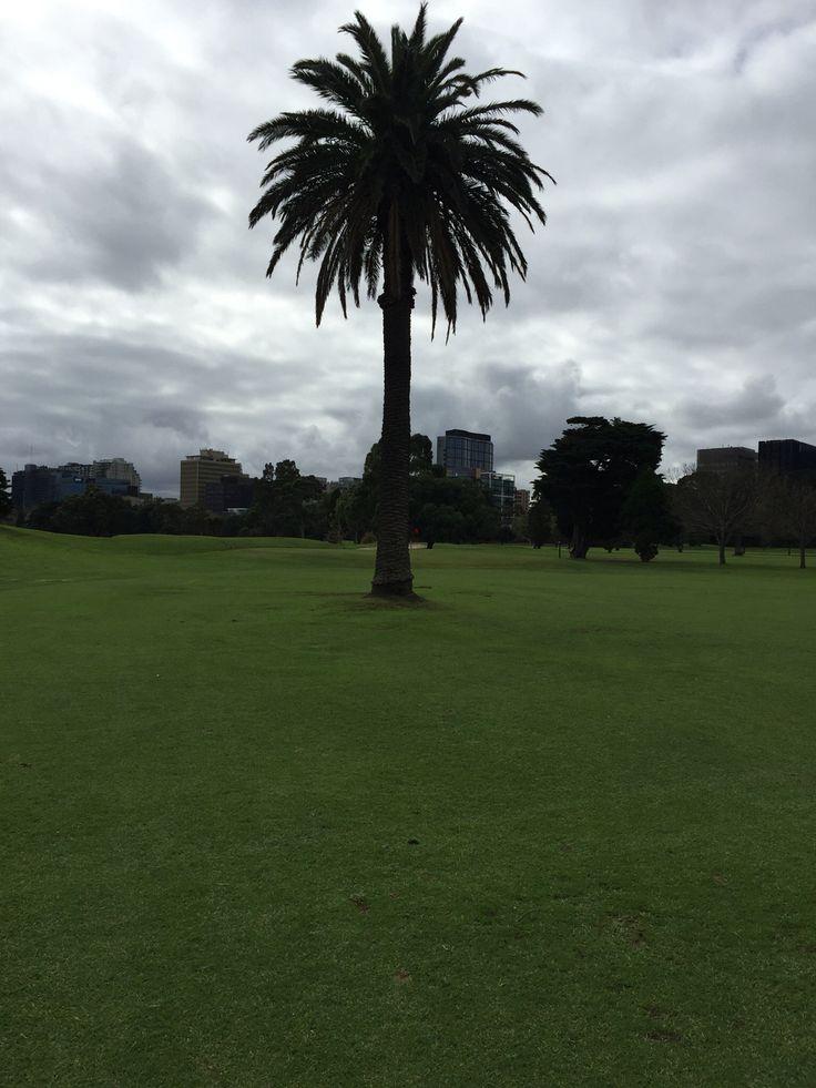 Albert Park Golf Course, Melbourne, Australia