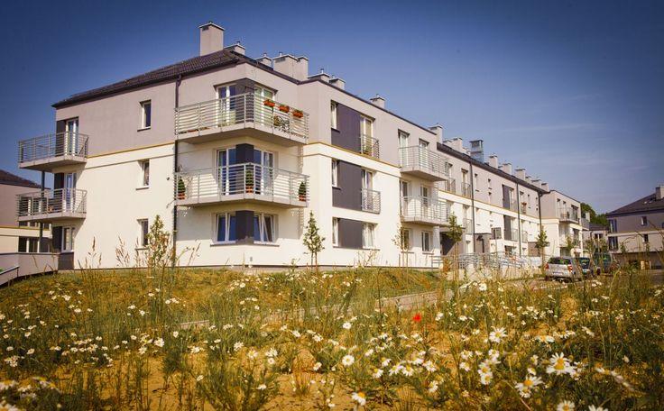 #Male_Blonia_Estate, #Szczecin, #Poland