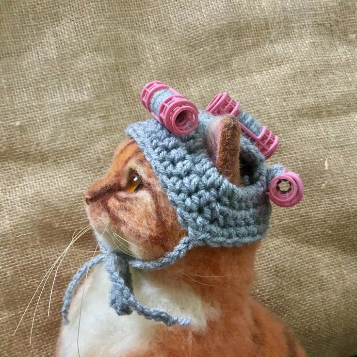 Hats for cats curler hat cat hat cat costumes cat Etsy
