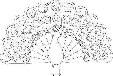 PeacockAnimalColoringPages