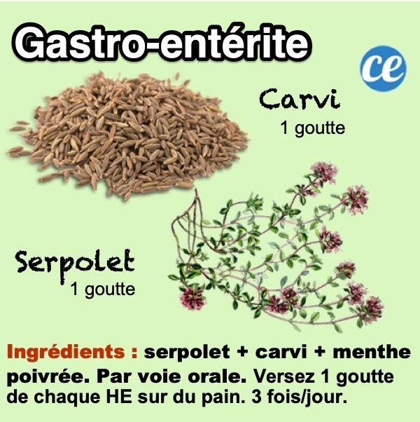Comment Plus Avoir La Gastro