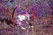 "New artwork for sale! - "" Cat Siam Mieze Siamese Cat  by PixBreak Art "" - http://ift.tt/2vW2847"