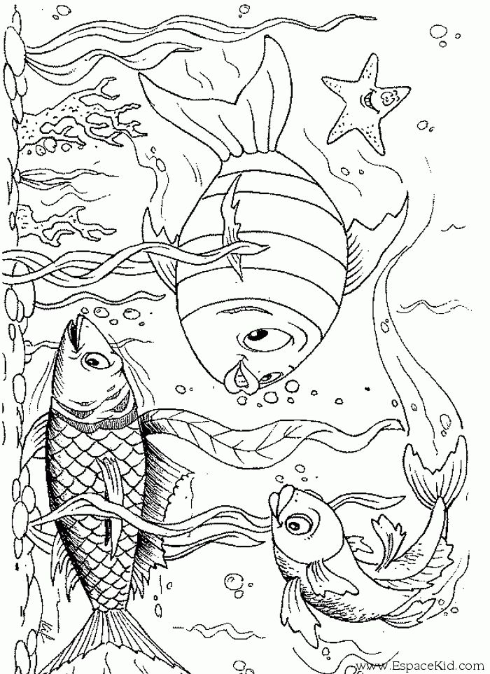 1000 ideas about coloriage poisson on pinterest april fools pranks coloring pages and colorier - Coloriage poissons ...