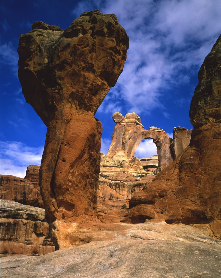 ~ Canyonlands National Park ~