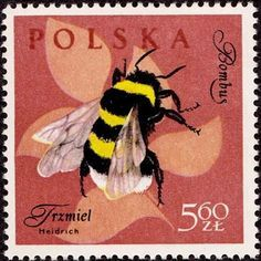 Bee stamp ~ Poland, my favorite bee postage stamp.