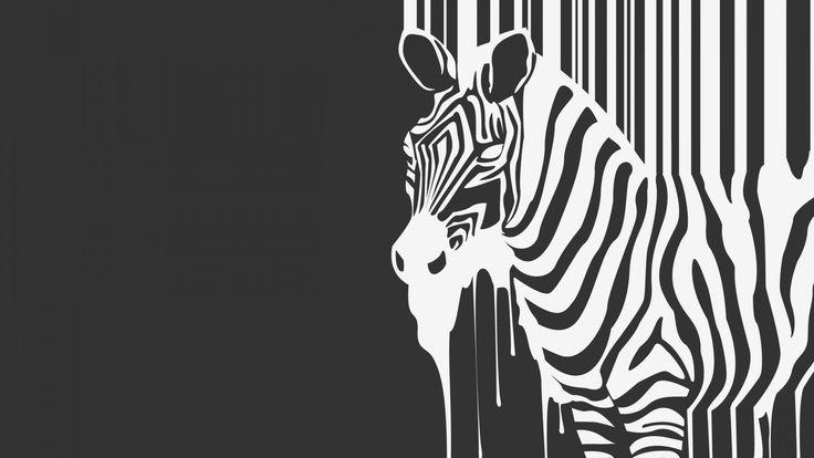 Скачать обои зебра, ч/б, zebra, animal, течет, зверь, раздел минимализм в разрешении 1600x900