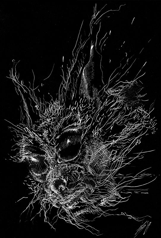 Genetics / white ink on black paper / graphic art / illustration