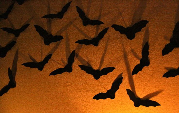 10 best images about Halloween Decorations on Pinterest
