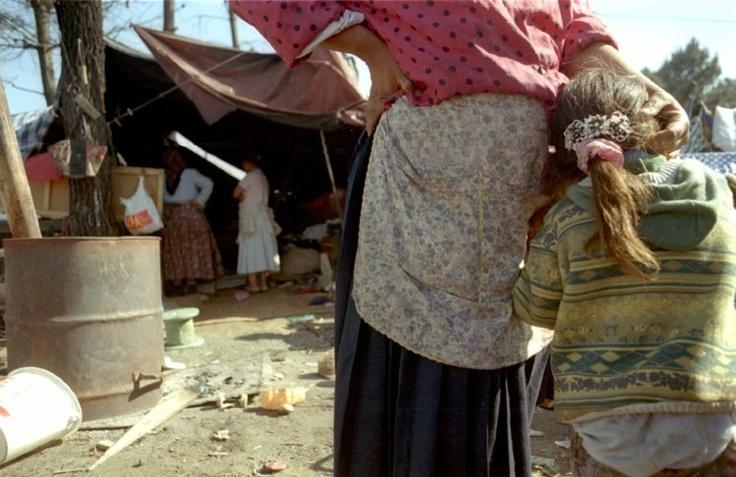 Grupo extremista quer pagar a ciganas romenas para serem esterilizadas - PÚBLICO