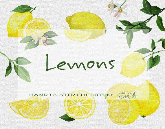 Citron Fruits Clipart Clipart Citron Agrumes D Aquarelle Clip Art