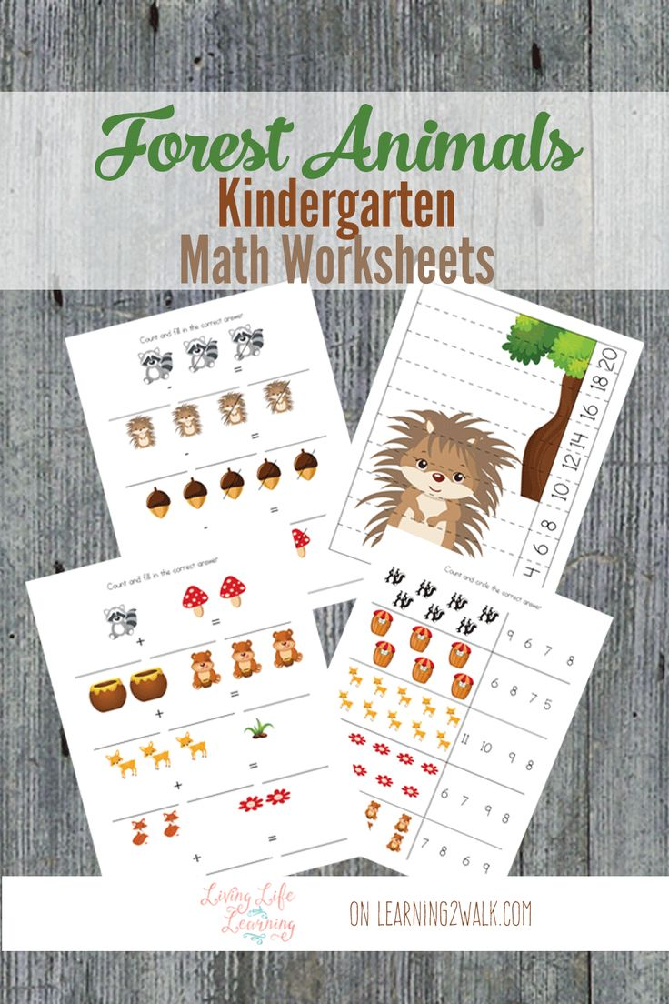 Bottle brush woodland animals - Why Not Review Some Math Skills With These Fun Forest Animals Kindergarten Math Worksheets