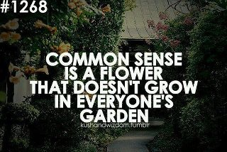 You got that right!!!: Flower Pictures, Remember This, True Facts, Truths, So True, Pictures Quotes, True Stories, Commonsense, Common Sense