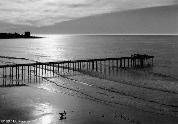 The Scripps Pier, 1966 by Ansel Adams