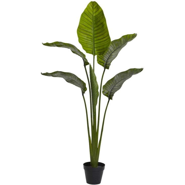 64-inch Travellers Palm Tree UV Resistant (Indoor/Outdoor) | Overstock.com Shopping - The Best Deals on Silk Plants