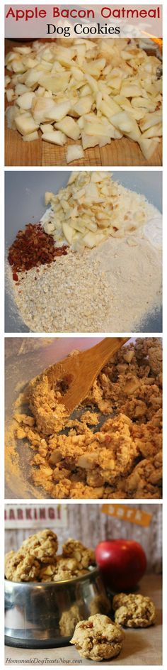 Apple Bacon Oatmeal Dog Cookies Ingredients: 1 large apple 2 Tbsp. bacon grease 2 Tbsp. bacon, diced 2 cups whole wheat flour ¼ cup ground Flax seed 1 Tbsp. baking powder ½ cup oatmeal ¼ – ½ cup milk