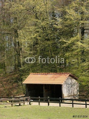 Wiese und Weide mit Unterstand für Tiere bei Bielefeld im Teutoburger Wald in Ostwestfalen-Lippe