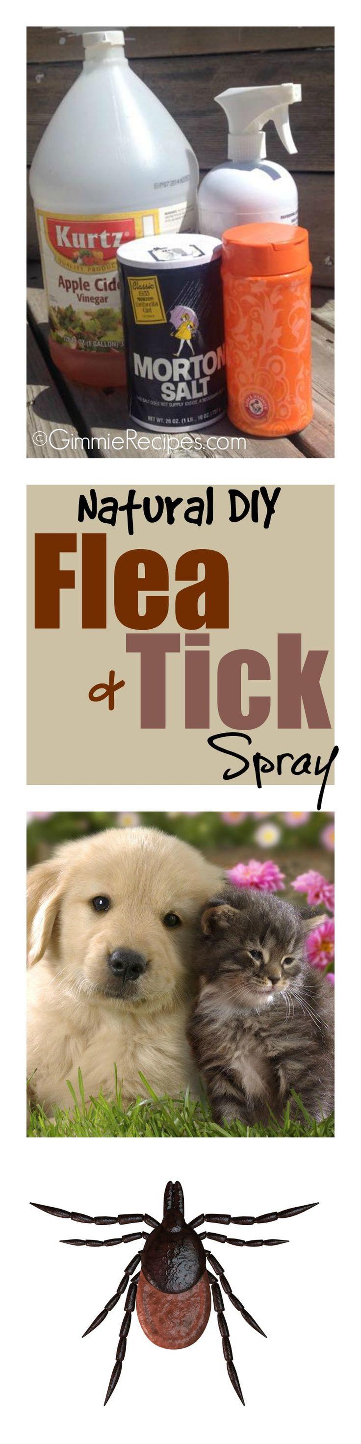 Natural Flea and Tick Repellent for Pets