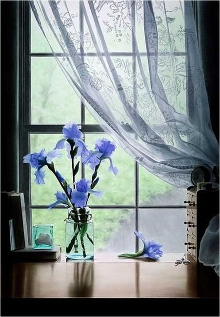 My Fotolog: Beautiful Iris, Sheer Curtains, Blue Flowers, Beautiful Placewindowsdoor, Lace Curtains, Clean Window, Alzheimers Reading, Reading Rooms, Blue Iris