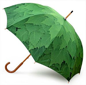 Leaf umbrella........it's like taking shelter under a tree, but the tree moves WITH you!