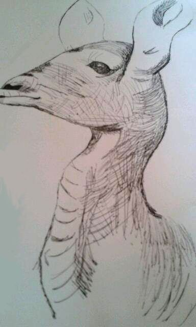 July 2014 - Drew an antelope in Henry Moore's style :)