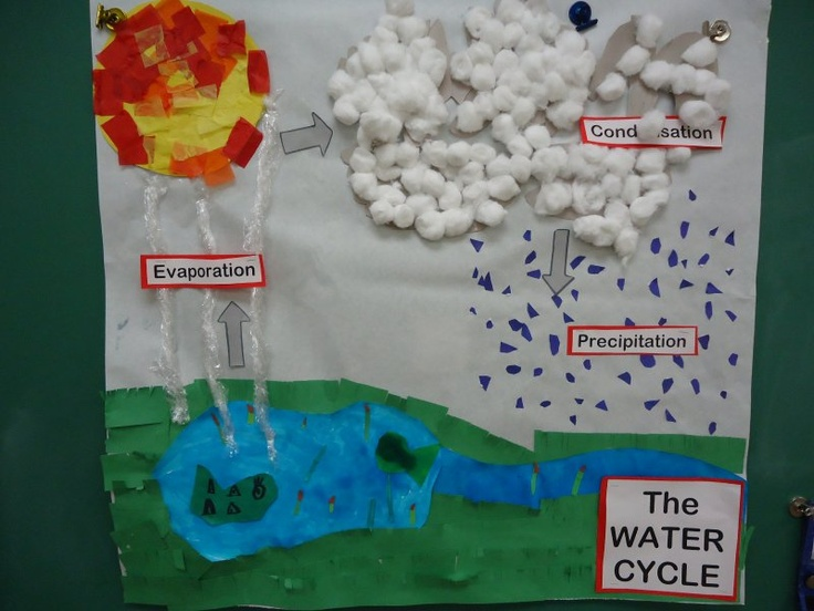 water cycle paper - photo #19