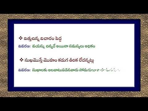 Idiomatic Sentences with meaning and simple explanation - Telugu
