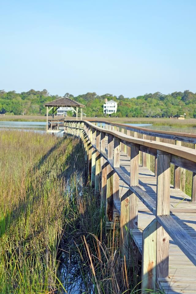 20 best images about myrtle beach at its best on pinterest for Deep sea fishing murrells inlet sc
