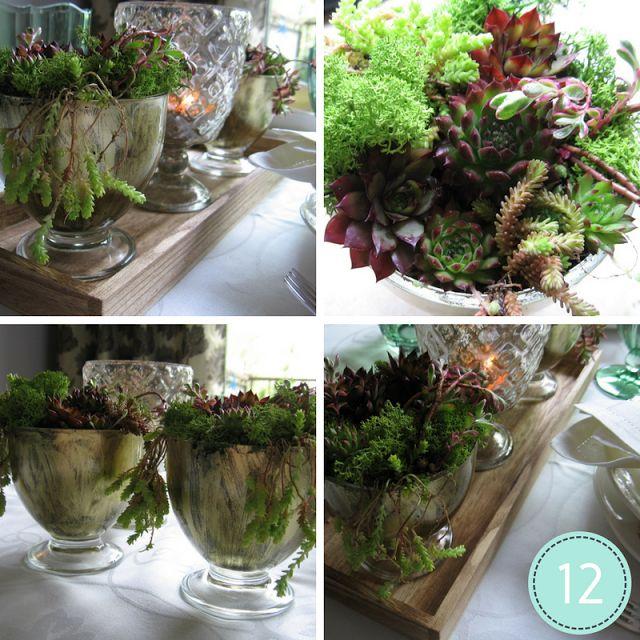 ProjectGallias dla DIY: Dekoracja z sukulentów, Flower decoration, centerpieces, Succulent plants