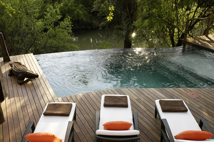#Jetsetter Daily Moment of Zen 7/13: Small Pools, Favorite Places, Backyard Outside Patio Spaces, Pools Chairs, South Africa, Morukuru Lodges, Lodges Sleep, Outdoor Pools, Infinity Pools