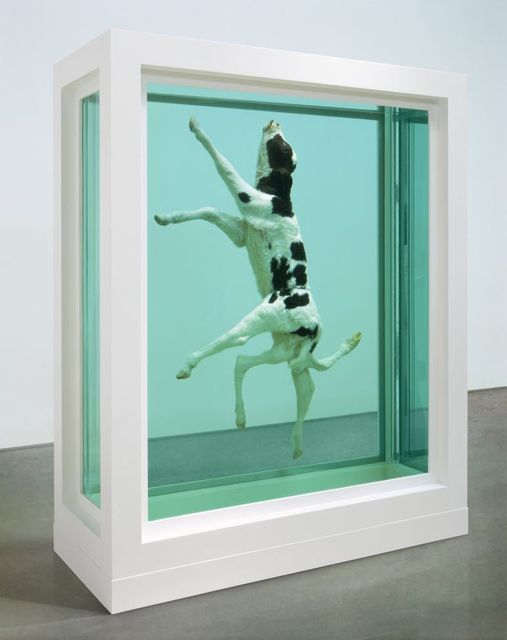 Damien Hirst - In His Infinite Wisdom, 2003. This work from Hirst's 'Natural History' series consists of a calf born deformed with six legs and then preserved in a steel and glass tank filled with formaldehyde solution.