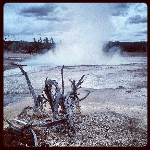 #HotSprings #Geysers #Yellowstone #Savanna2013