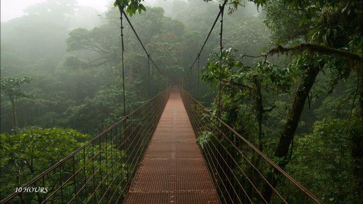 10 Hours Rain and Thunder;Sleep,Relaxing,Meditation ASMR Sound HD High Q...