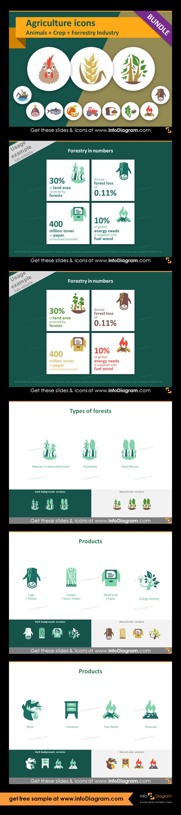 Food and Agriculture icons: Animals, Crop Cultivation, Forestry. All symbols in simple flat style, suitable for Metro UI style graphics. Icons provided in 5 versions.  Infographics with forestry statistics. Icons showing types of trees and forests. Graphics of: softwoods, hardwoods, mixed forest, undisturbed forest, plantation, semi natural forest. Products from forestry and wood industry: logs, lumber, paper, energy forestry, resin, furniture, fuel wood, charcoal.