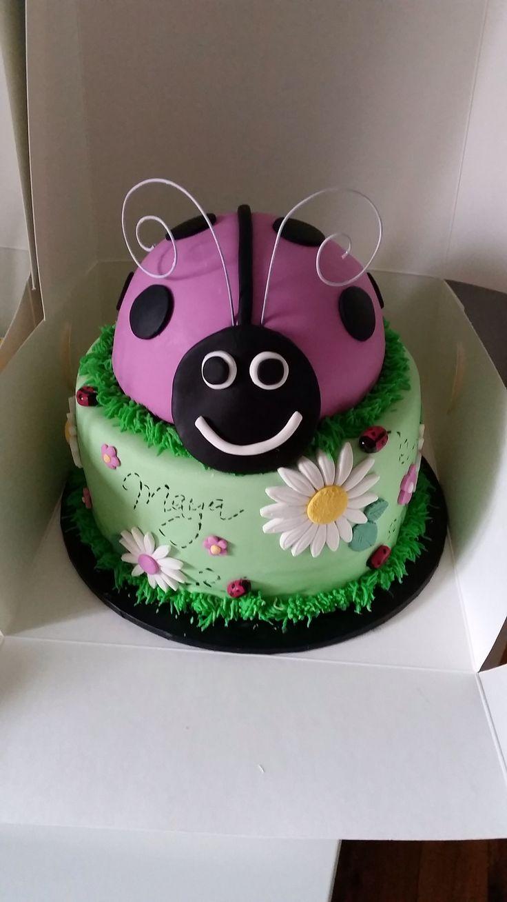 Lady Beetle Cake