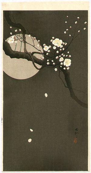 Ohara Koson: Plum Blossoms at Night - Artelino