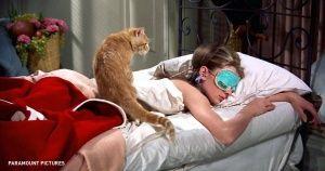 Ученые доказали: ночной сон больше полезен женщинам, чем мужчинам  Рубрики:     НаукаТеперь завтрак готовит муж.