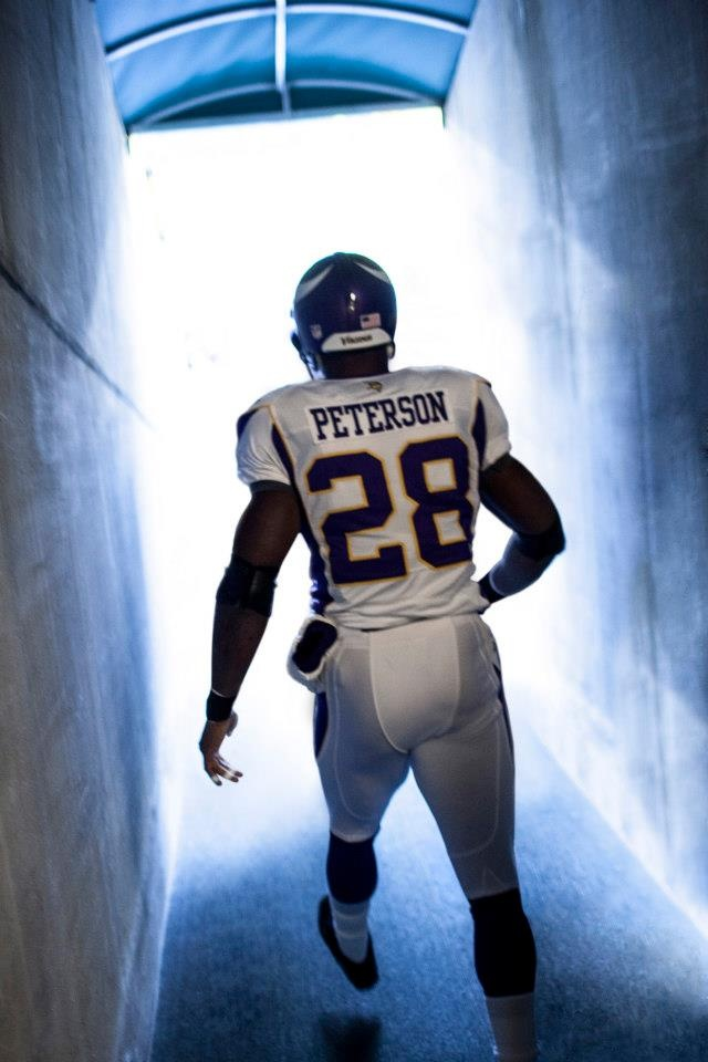 101 best images about Minnesota Vikings on Pinterest ...
