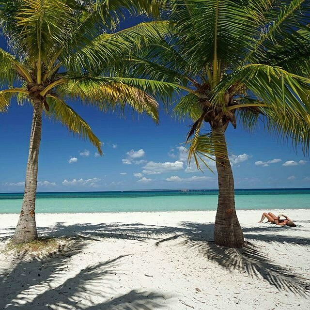 Tropical Beaches: 33 Best Images About Tropical Beaches In The Philippines