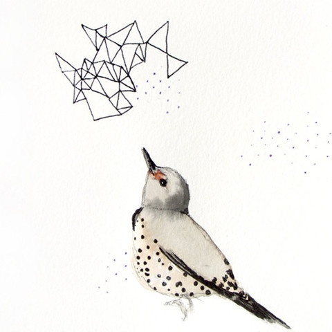 This Northern Flicker is playing connects the dots!