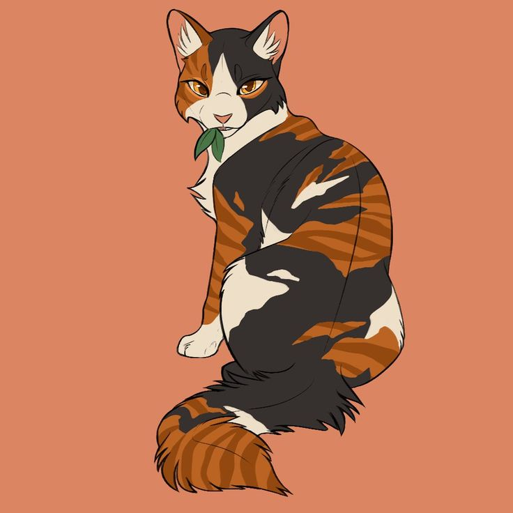 Warriors Into The Wild Manga: 2072 Best Images About Warrior Cats On Pinterest