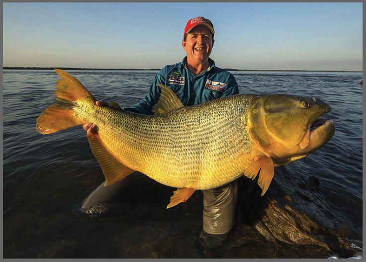 Pescaria de dourado Pantanal matogrossense- Brasil