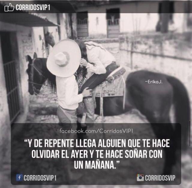 CorridosVip | Frases ️ | Pinterest