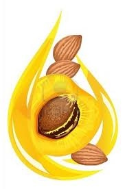 Apricot kernel oil. Rich in vitamins A, B1, B2, B6, B17 and E!!! <3