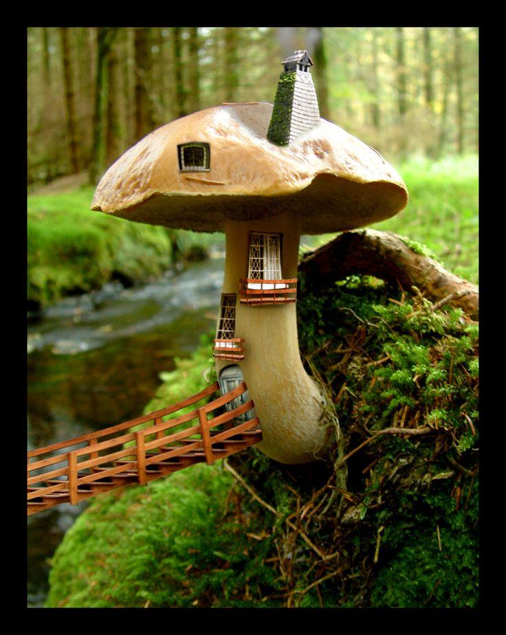 A tiny little mushroom house where little tiny fairies live.