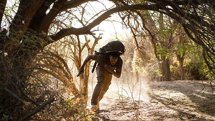 Rainierland Watch Movies Online Free Pro In KinoKiste, Online Movies Pro, Rainierland Pro, Rainierland