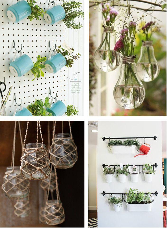 1000 id es sur le th me terrarium suspendu sur pinterest for Plantes japonaises exterieur