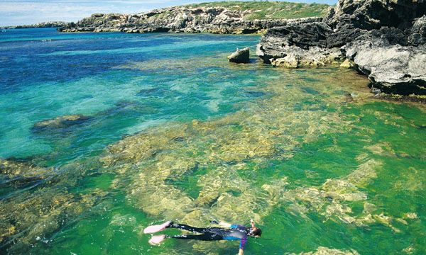 Featured destination: Rockingham   Rockingham is Perth's marine playground located 45 minutes south of Perth. Enjoy an eco-tourism experience. Swim together with the marine animals, surf and tour the Shoalwater Islands Marine Park to see penguins and Australian sea lions.