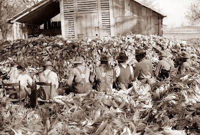 Corn shucking time in North Carolina. The picture was taken in 1939 near Stem in Granville county. This picture was taken on a sharecroppers farm. Corn Shucking was a time of great celebration, and was usually accompanied by dances, feasts, and other festive get togethers. This tradition went all the way back to slavery, when the time slaves were allowed time for rest and celebration.
