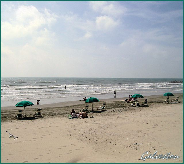 1000 images about galveston texas on pinterest for Fishing spots in galveston